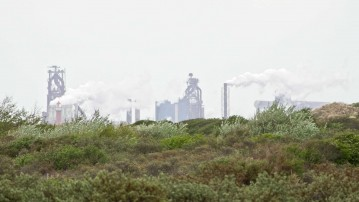 Klimatossernes kamp mod vindmøller
