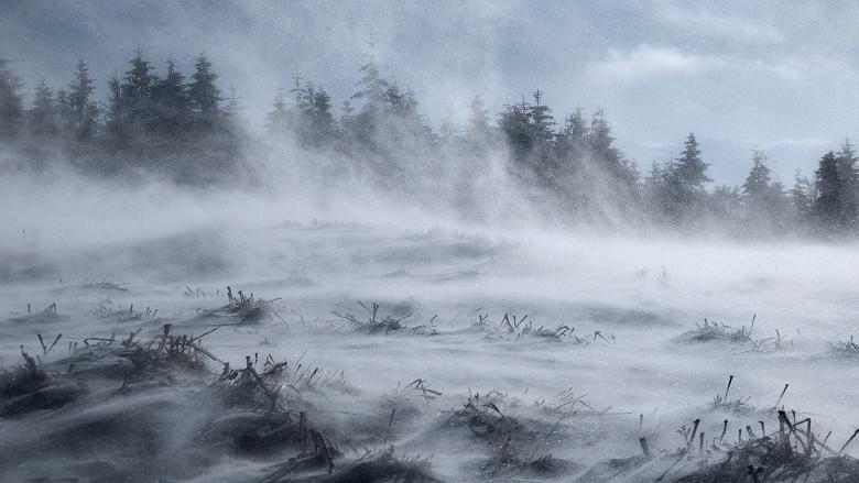Tomhed og jagen efter vind